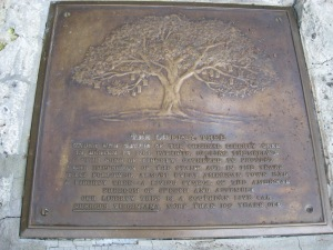 Liberty Tree Plaque